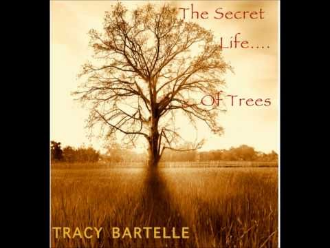 """""""THE SECRET LIFE OF TREES"""" RELAX and CHILL OUT to 75 mins of music by film composer Tracy Bartelle"""