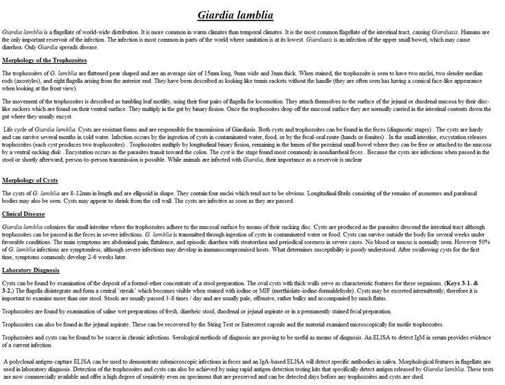 giardia lamblia research paper