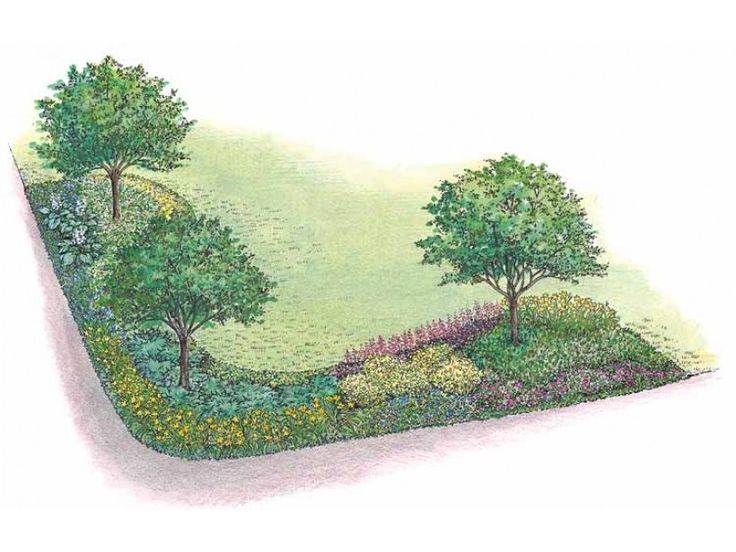Best 25 Landscape plans ideas on Pinterest Privacy landscaping
