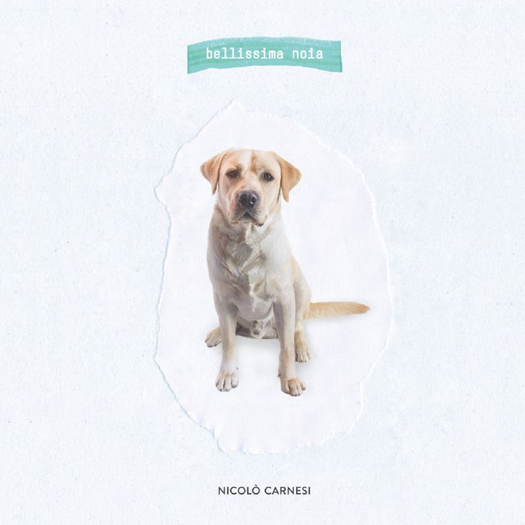 NICOLO' CARNESI - Bellissima Noia (2016) DOWNLOAD FREE iTunes Mp3