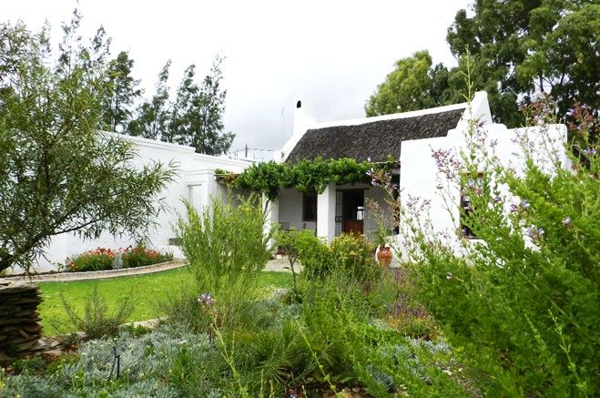 Wild Almond Cottage - Wild Almond Cottage is a delightful two-bedroom thatch roofed cottage comprising two bathrooms, a lounge and kitchen, with a refreshing plunge pool were guests are welcome to cool off after their travels. ... #weekendgetaways #mcgregor #southafrica