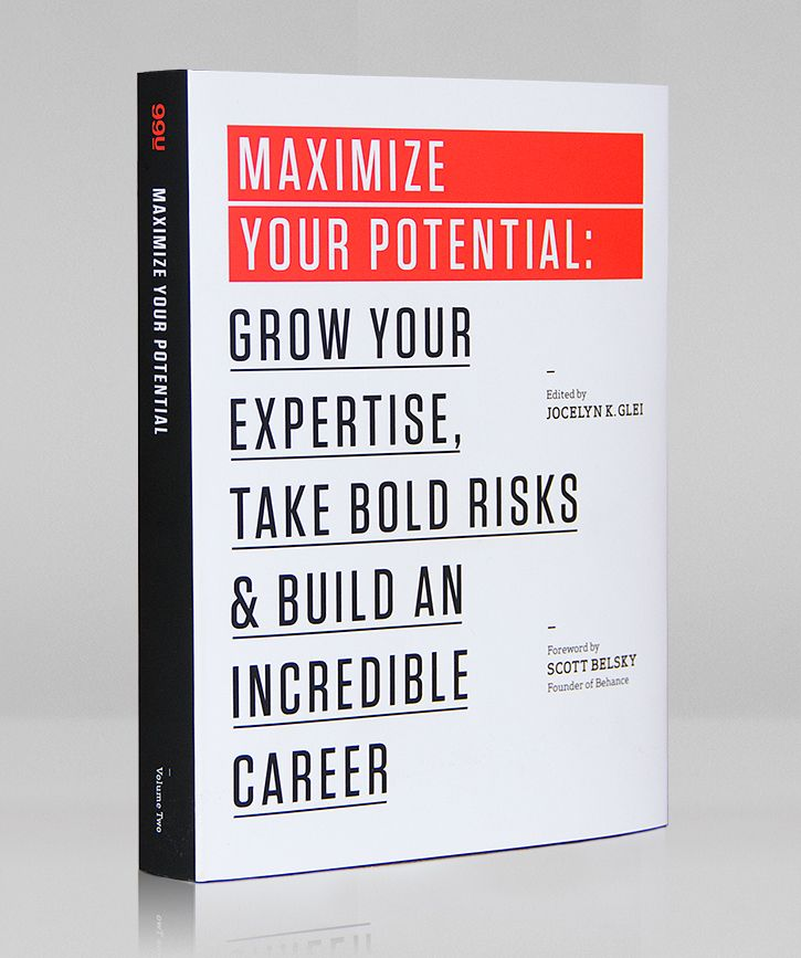 Maximize Your Potential: Grow Your Expertise, Take Bold Risks & Build an Incredible Career (Chris)