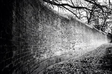 Escape from the Beechworth Lunatic Asylum