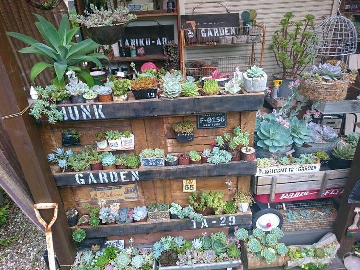 小さな庭の画像 by ikuraさん   小さな庭と多肉植物とリメ缶とコンクリート鉢とサビサビ雑貨とリメ鉢と雑貨と秘密基地と多肉棚とハンドメイドフェス