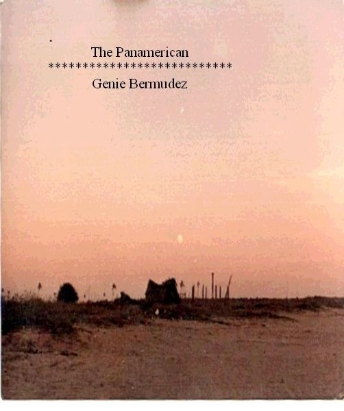 The Panamerican. A humorous true-life account of a couple's hitch hiking venture from California to quito, Ecuador. You can download the ebook for pay what you want!