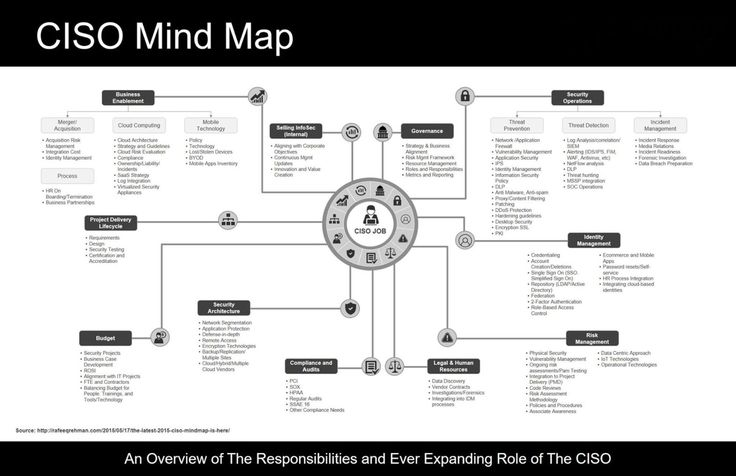 CISO Mind Map Joe Shenouda Pulse LinkedIn Infographics - ciso resume