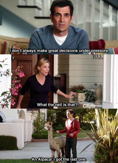 modern family: Modern Families, Modernfamili, Giggles, Funny Stuff, Alpacas, Humor, Things, Hilarious, Phil Dunphy