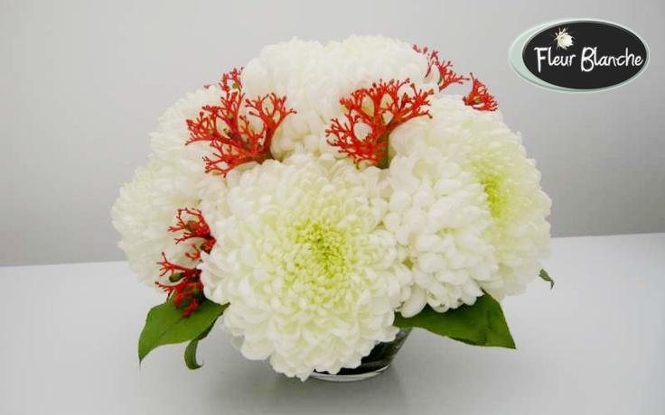 Chrysanthème Blanche- puritate si simplitate http://www.florariafleurblanche.ro/produs/chrysanthme-blanche