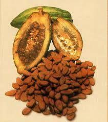 Afbeeldingsresultaat voor lesidee chocola