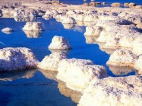 Natural Sea Salt: Another possible natural source for saltwater cleaning during a salt-water flush.