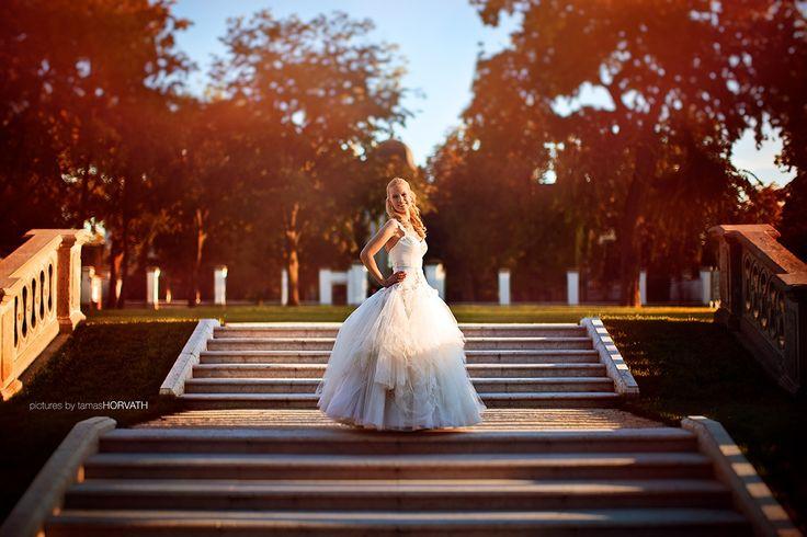 Sunlight wedding by HorvathTamas on 500px