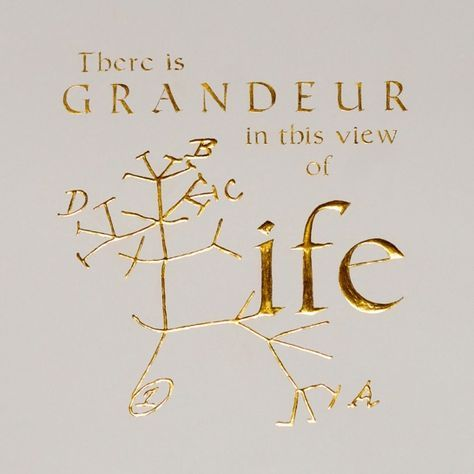 """There is grandeur in this view of life, with its several powers, having been originally breathed into a few forms or into one; and that, whilst this planet has gone cycling on according to the fixed law of gravity, from so simple a beginning endless forms most beautiful and most wonderful have been, and are being, evolved.""-Charles Darwin, The Origin of Species"
