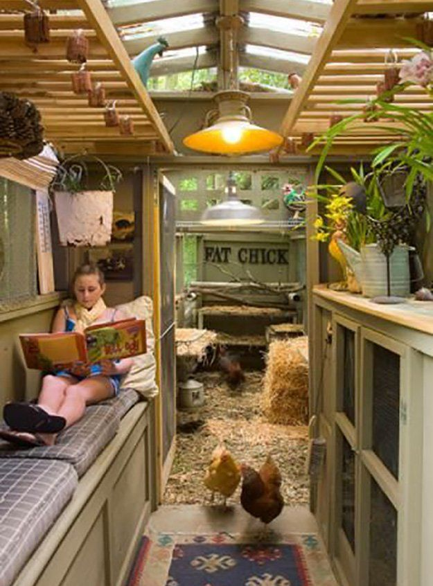 How cool is this one?  Incorporate an extra area that is separated with a screen door so people can hang out with the chickens