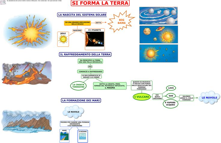 Le origini della vita | AiutoDislessia.net