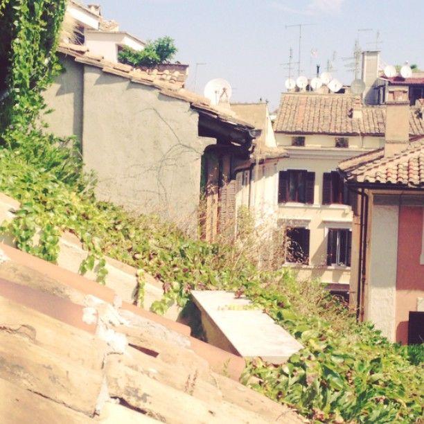 Rome trip 2013