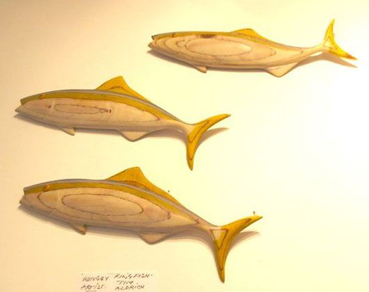 Carvings by Tim Aldrich  #fish #carving #wood #nzartist #wallart #finearts