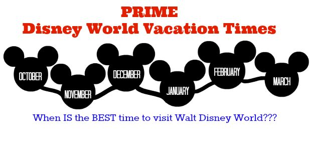 Surviving Disney: When Is The Best Time To Visit Disney World - Serendipity and Spice