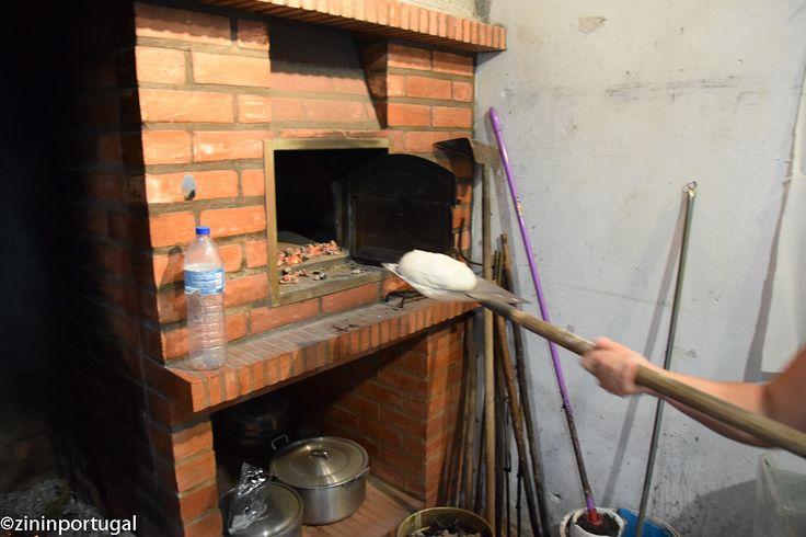 Hoe bak je zo'n heerlijk Portugees brood? Lees het op https://zininportugal.wordpress.com/2015/09/06/hoe-bak-je-een-pao-caseiro-zon-typisch-portugees-brood/