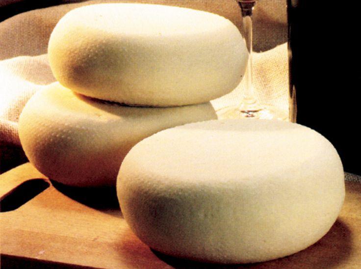 Caciotta .. the Italian farmstead cheese