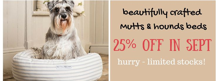 Mutts & Hounds Dog Bed Sale Sept 2015