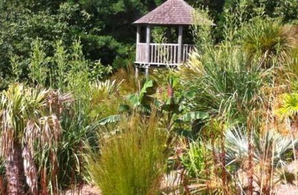 Garden in Cornwall | Tremenheere Sculpture Gardens | Penzance | Cornwall