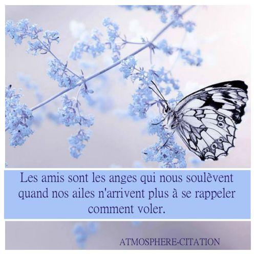 Les amis sont les anges ......................................  Trouvez encore plus de citations et de dictons sur: http://www.atmosphere-citation.com/amitie/les-amis-sont-les-anges.html?