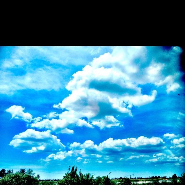 Puffy white puffs of cloud