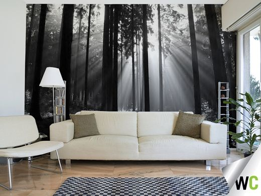 1000 images about wall paper murals on pinterest zen for Black feature wall living room