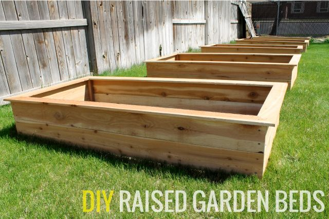 Chris loves Julia: Our DIY Raised Garden Beds - These 5 beds cost lest than $100 and took them less than 3 hours to build.