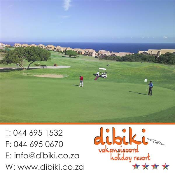There are a lot of things to do in and around Mossel Bay and Dibiki Holiday Resort.Some of the best Golf courses in the country close by . Stay with us for more. #activities, #golf