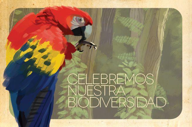 11 de septiembre Día Nacional de la Biodiversidad