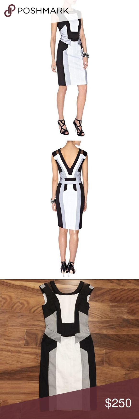 """karen millen • black & white graphic panel dress Gorgeous black & white graphic panel dress from Karen Millen. Features scoop neck front and v neck back, black mesh inset at collar and mesh panel overlays. Thick cotton poplin fabric, fully lined.   • size US 6 / UK 10 --- runs small, best for a size 4 or even a 2, please check measurements! • 33"""" bust 
