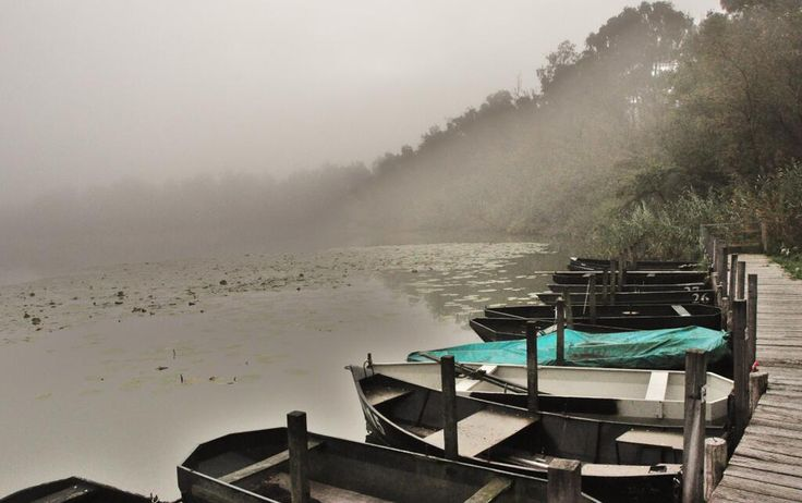 Herfst heeft vele kanten. Een hele mystieke is de kalme kant met mist in de ochtend. Foto: @JanBijvelt