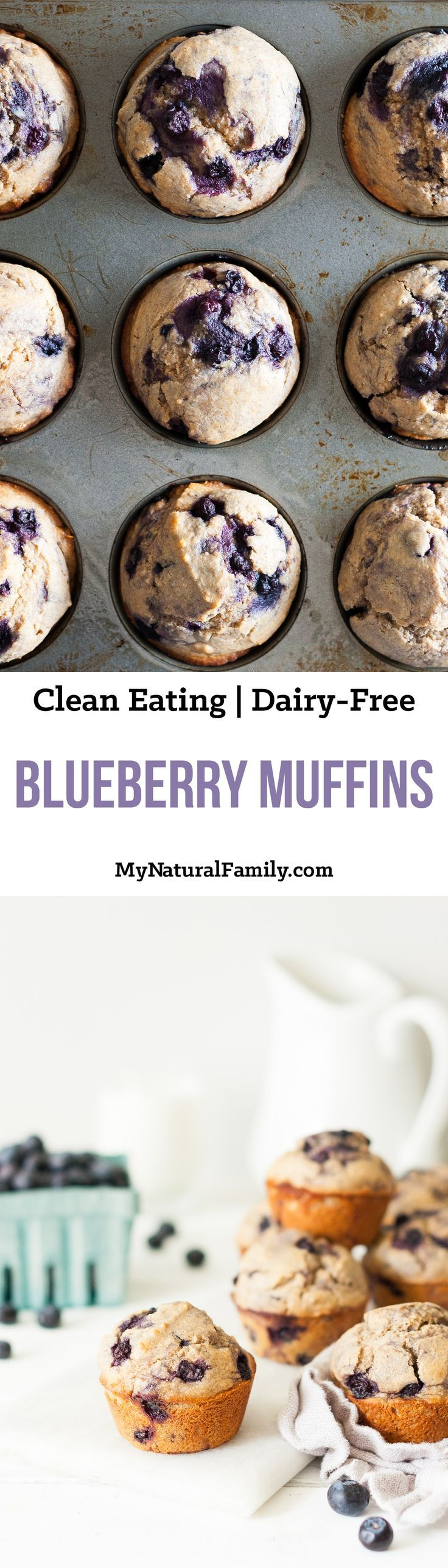 Blueberry Muffins Recipe {Clean Eating, Dairy-Free} - these are made with whole wheat flour and honey, so you can feel good eating them.