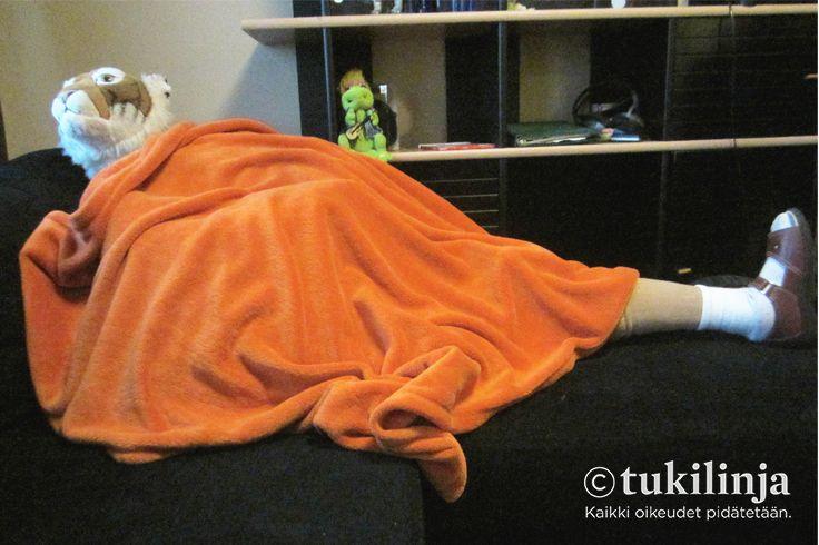 """5. Tikru: PROTEESIJALKAINEN TIIKERI - """"Kuvassa näkyy sohvalla lepäilevä tiikeri."""""""