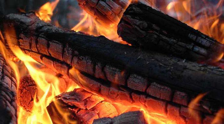 Vælg det rette brænde