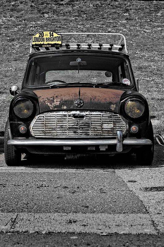 London Brighton Classic Rat Mini