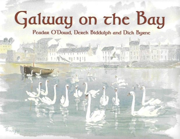 Galway on the Bay - Irish Art & Artists - Art & Photography - Books