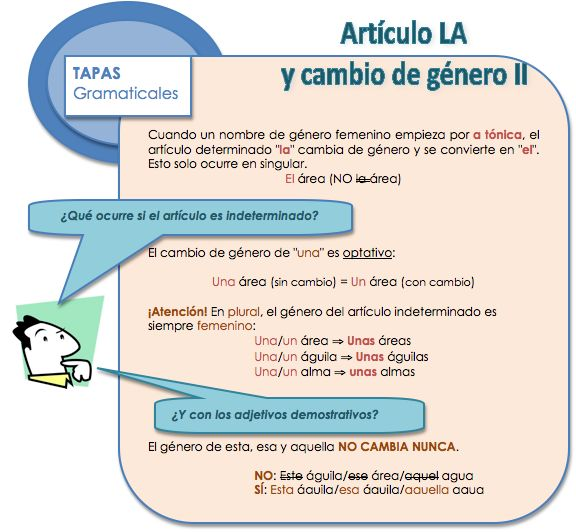 Artículo LA y cambio de género II Learn Spanish / Spanish vocabulary / Spanish grammar