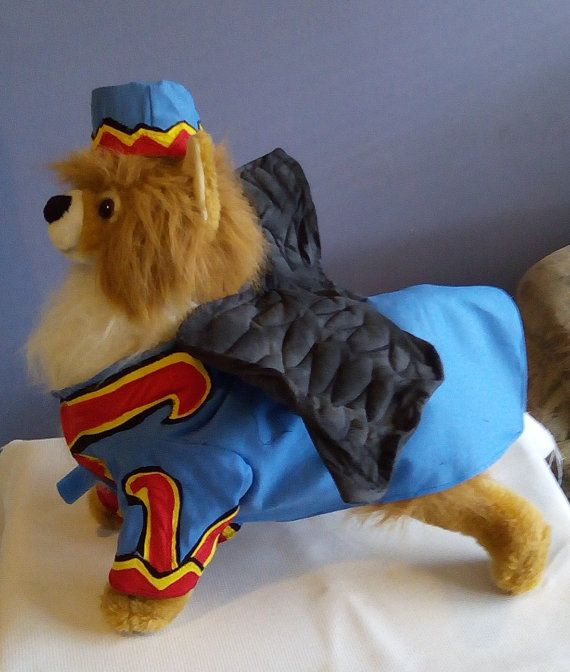 Best 25+ Flying monkey costume ideas on Pinterest