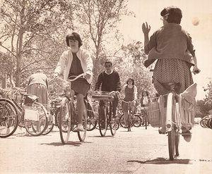 Bike riders on the University of California, Davis campus circa 1960