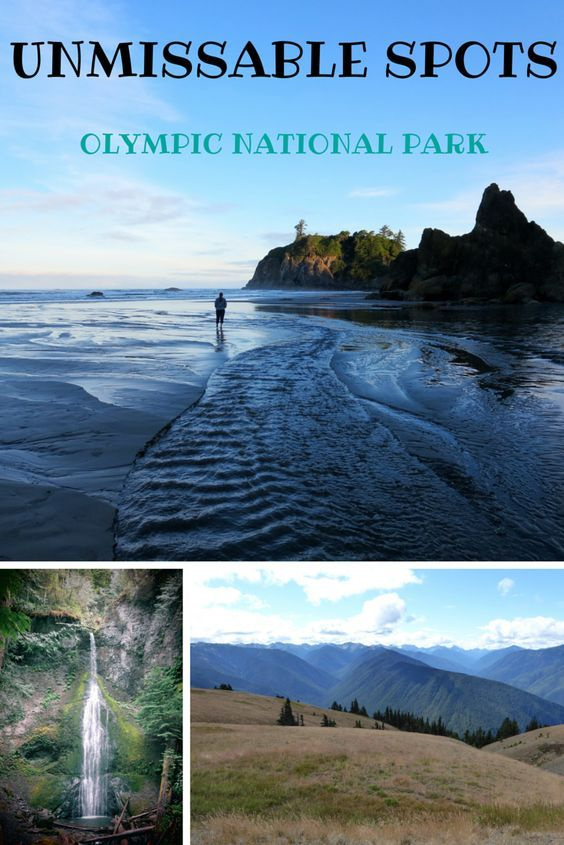 4 Unmissable Spots in Olympic National Park http://thegirlandglobe.com/olympic-national-park/?utm_content=buffer3339e&utm_medium=social&utm_source=pinterest.com&utm_campaign=buffer #travel #pnw #washington: