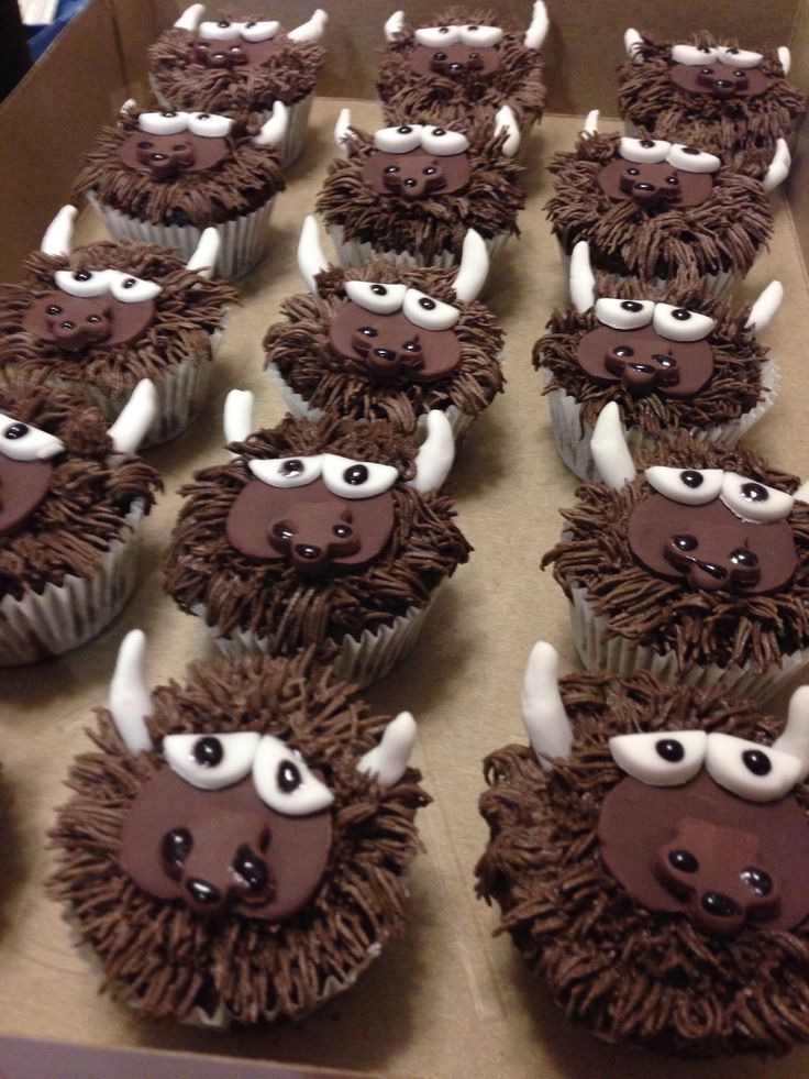 Rumble the Bison cupcakes. Oklahoma City Thunder | cakes ...