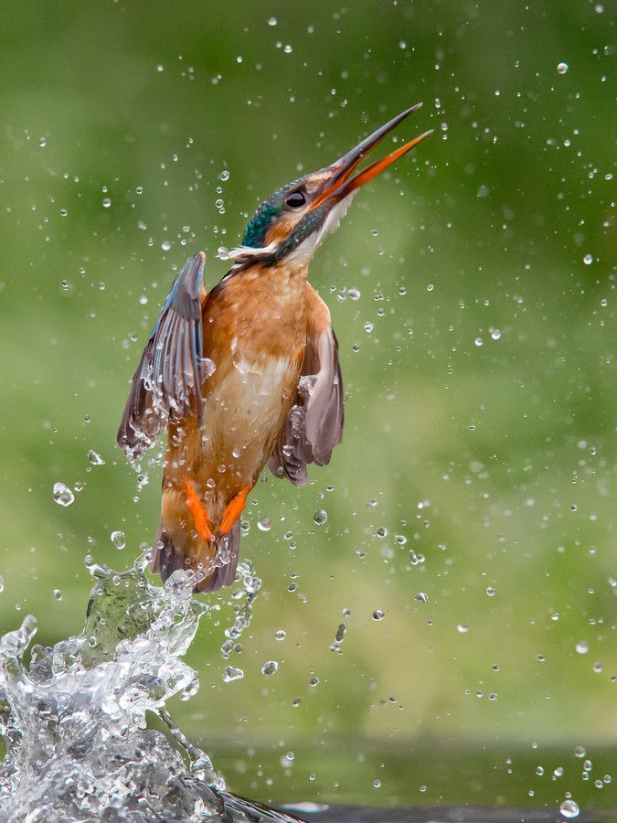 Launched by Jamie MacArthur on 500px
