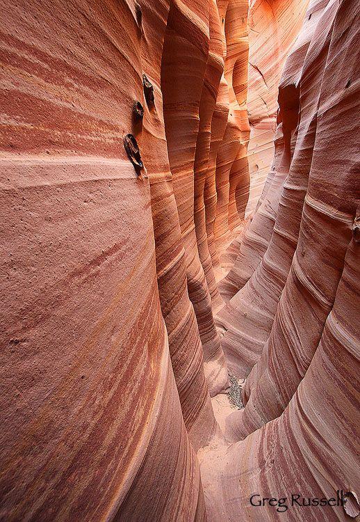 Zebra slot canyon, Grand Staircase-Escalante National Monument, Utah