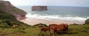 10 lugares imprescindibles en Asturias