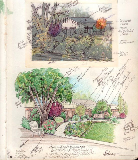 Such beautiful sketches!  GardenScaping: Plans/Sketches