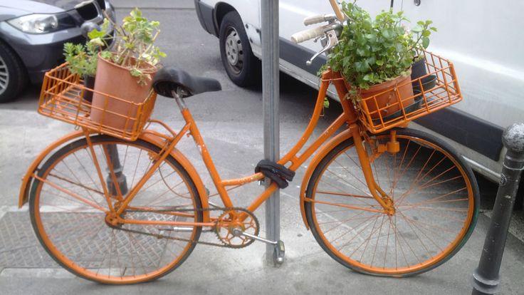 L'energia dell'arancio  Orange is the new black