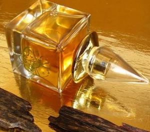 Oud Caravan N° 3 La Via del Profumo for women and men. Please visit www.zoologistperfumes.com for one-of-a-kind niche perfumes!