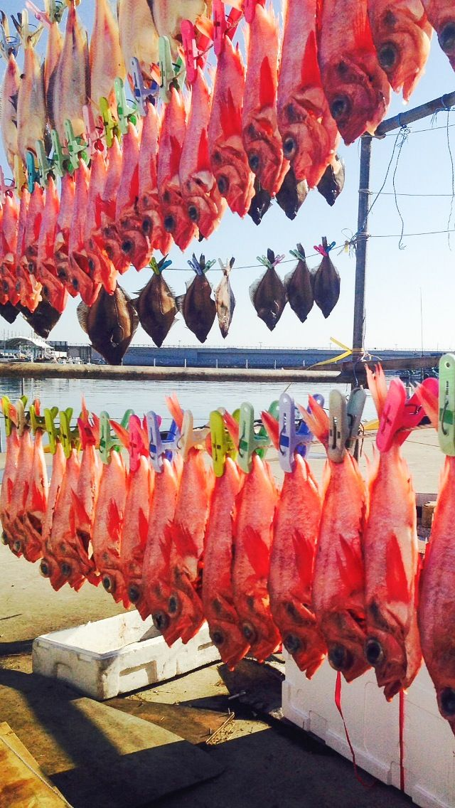 East Sea, Gangwon-do.